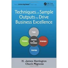Techniques and Sample Outputs that Drive Business Excellence (The Little Big Book Series)